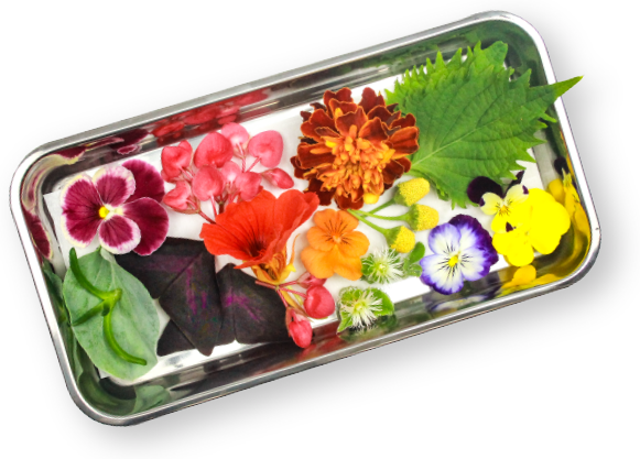 Edible flowers and edible leaves