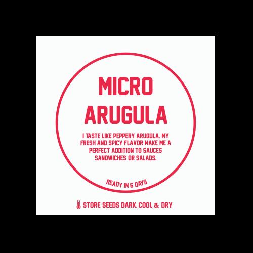 Micro Arugula 1