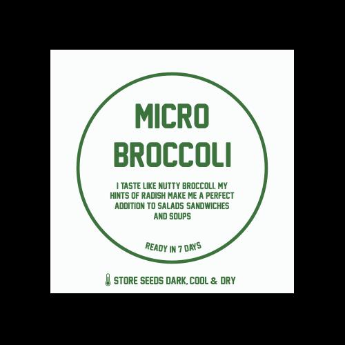 Micro Broccoli 1