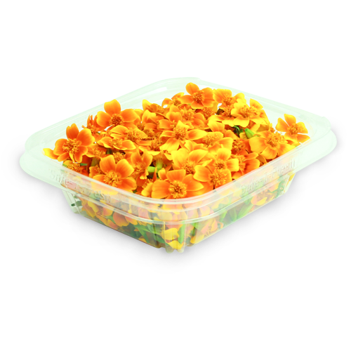 Micro Marigold in Clamshell