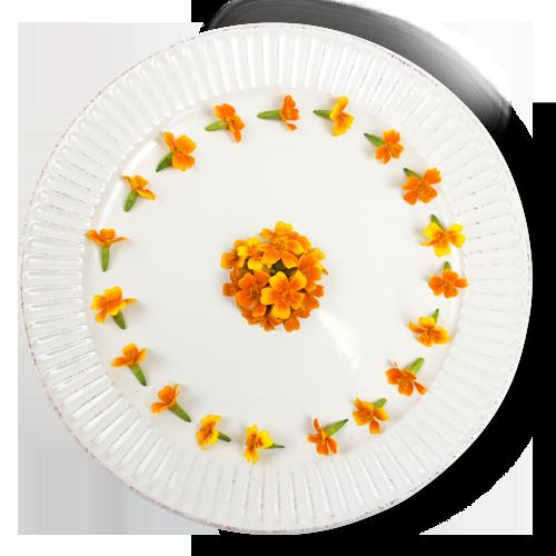 Micro Marigold Plate